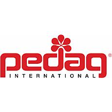 BRAND_pedag-logo