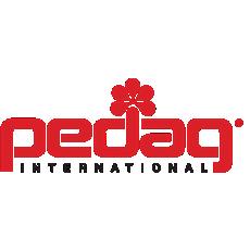 BRAND_lg_pedag_dor1