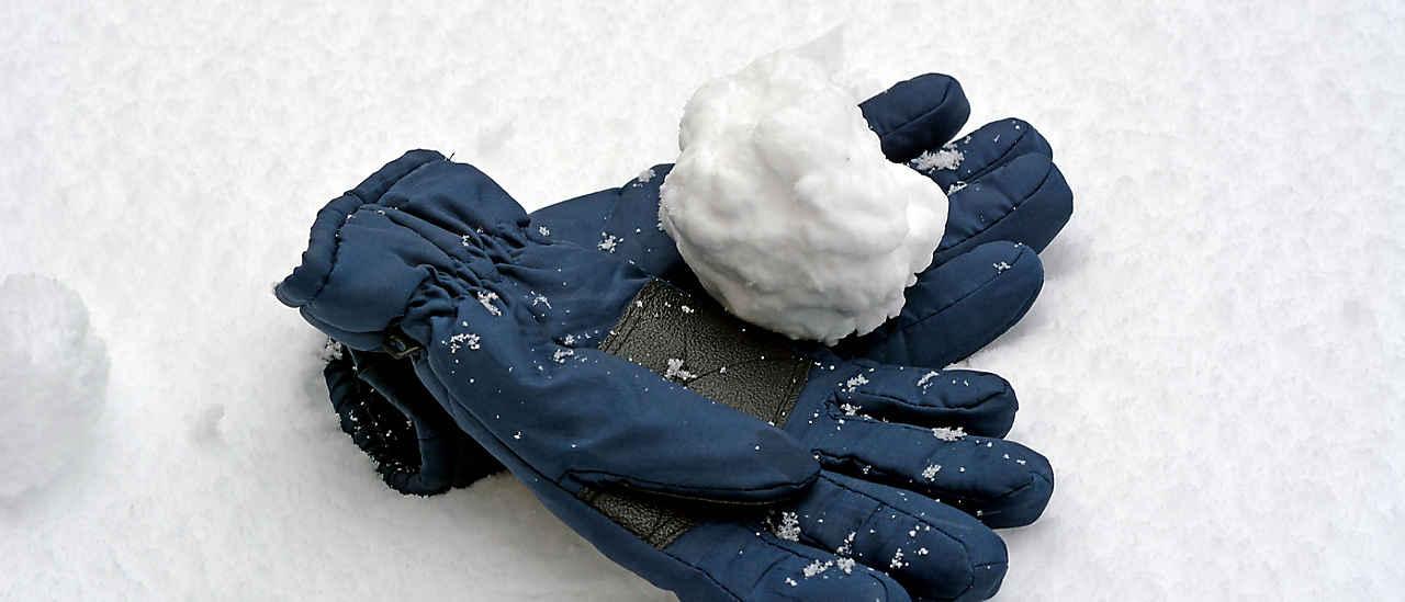Header_Gloves_2019