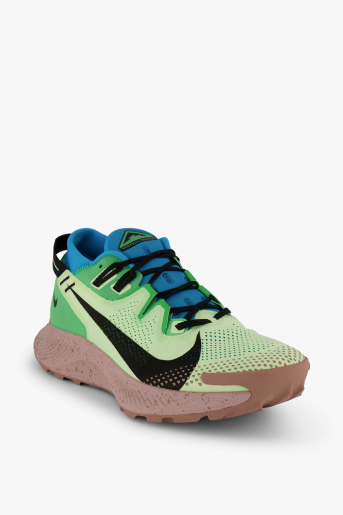 chaussure nike pegasus