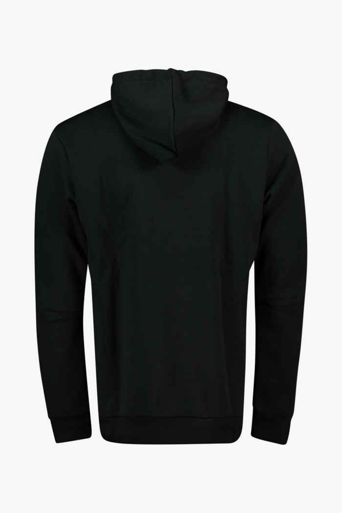 adidas Performance Terrex Graphic Logo hoodie hommes 2