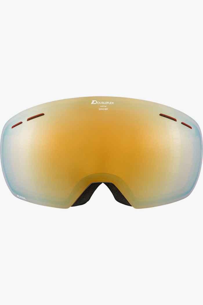 Alpina Granby HM lunettes de ski Couleur Gris 2