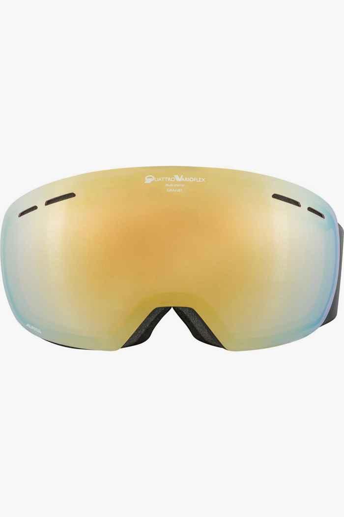 Alpina Granby QVM occhiali da sci 2