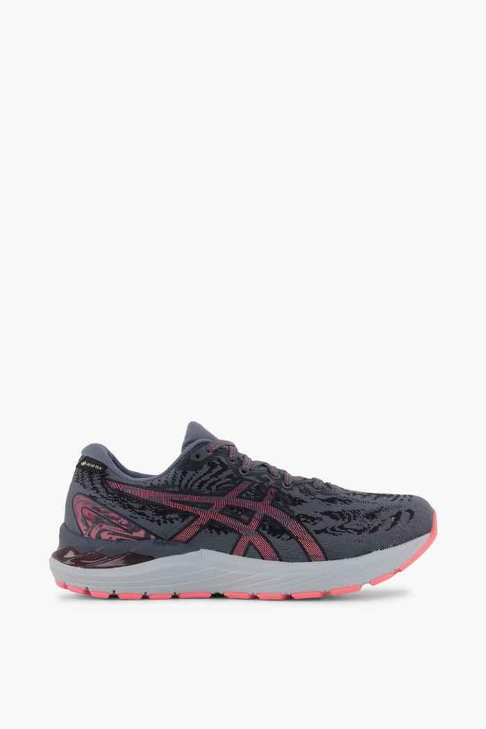 ASICS Gel Cumulus 23 Gore-Tex® chaussures de course femmes 2