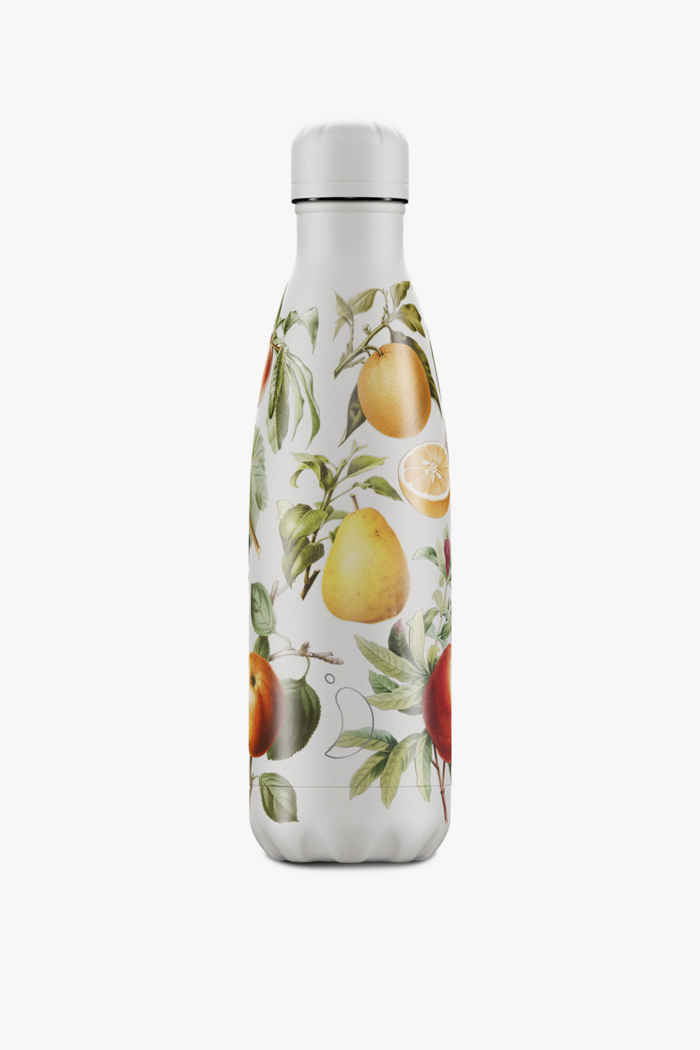 Chilly`s Botanical 500 ml gourde Couleur Apple 1