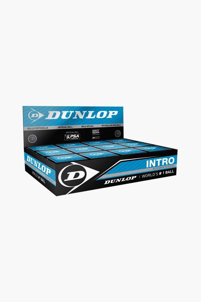 Dunlop 12-Pack Intro Squashball 1