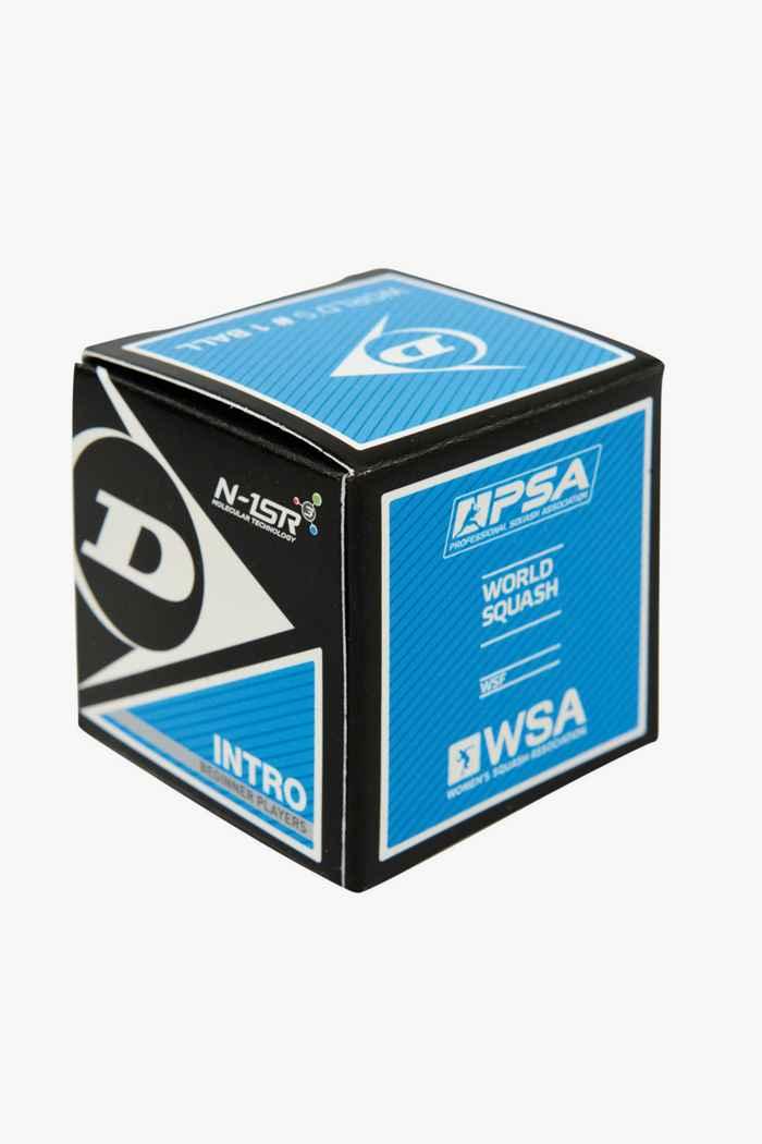 Dunlop 12-Pack Intro Squashball 2