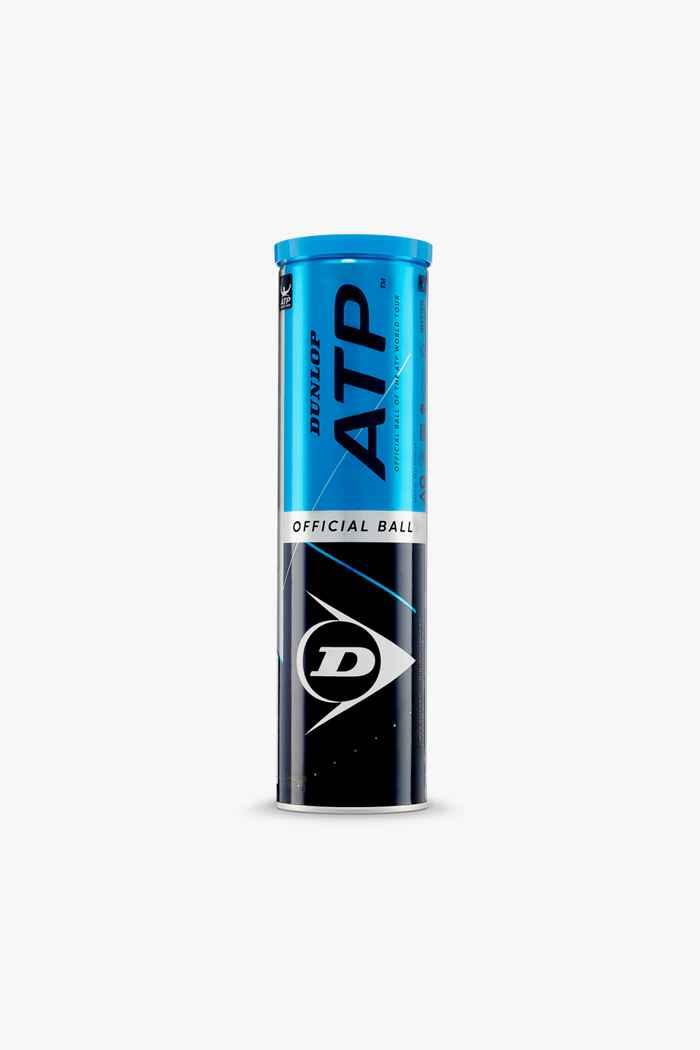 Dunlop ATP Official Tennisball 2