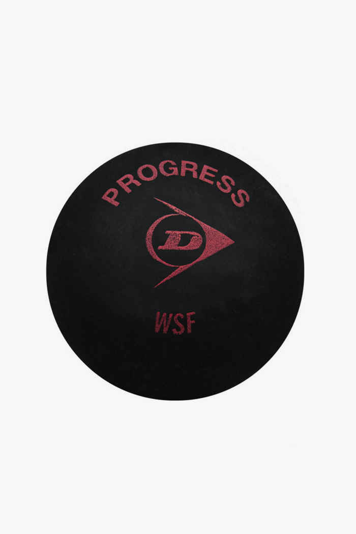 Dunlop Progress pallina da squash 1