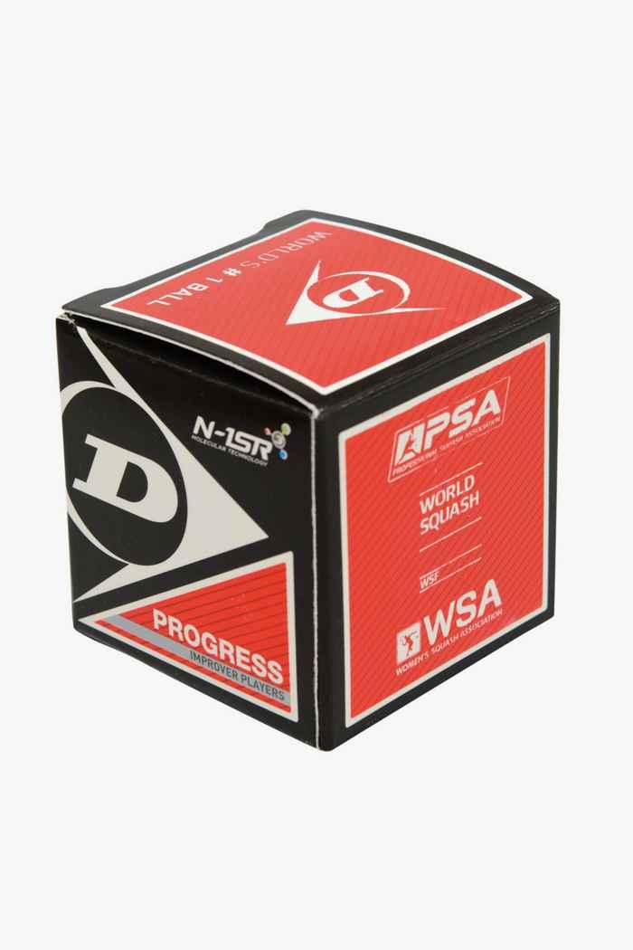 Dunlop Progress pallina da squash 2