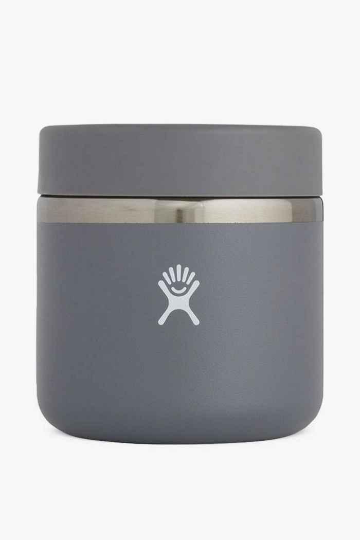Hydro Flask 591 ml Insulated food pot Colore Grigio 1