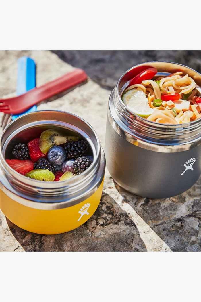 Hydro Flask 591 ml Insulated food pot Colore Grigio 2