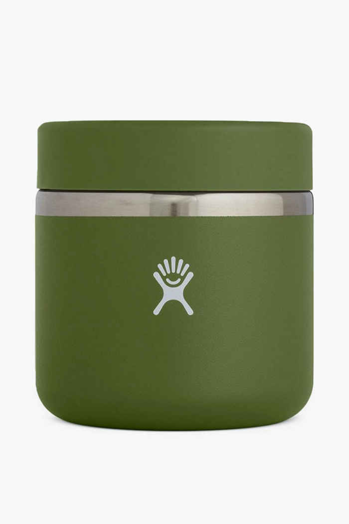 Hydro Flask 591 ml Insulated Foodbehälter Farbe Olive 1