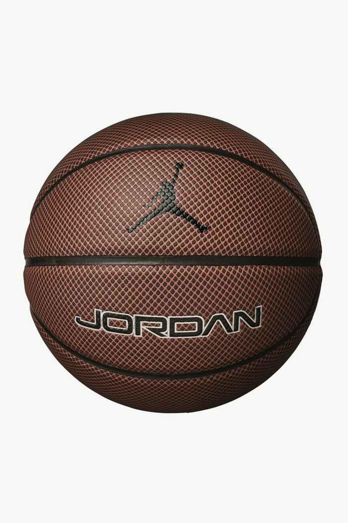 Nike Jordan Legacy Basketball 1