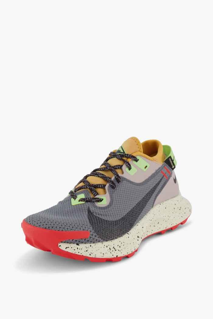 Nike Pegasus Trail 2 Gore-Tex® Herren Trailrunningschuh Farbe Grau 1