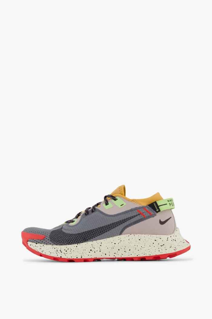 Nike Pegasus Trail 2 Gore-Tex® Herren Trailrunningschuh Farbe Grau 2