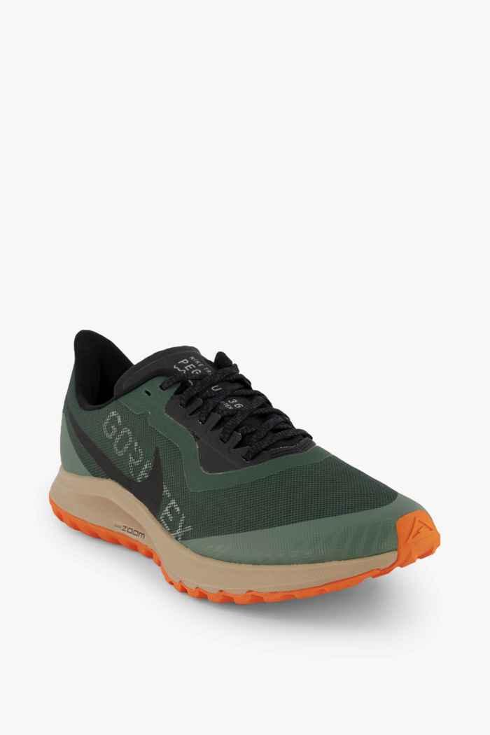 Nike Zoom Pegasus 36 Trail Gore-Tex® Herren Laufschuh 1