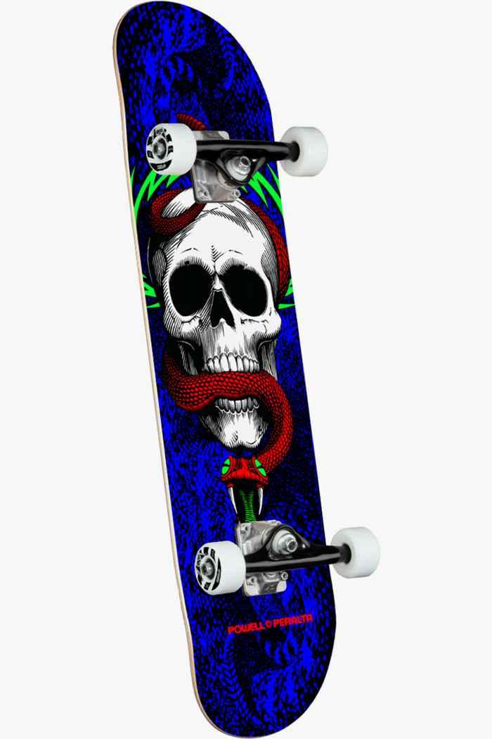 Powell-Peralta Skull & Snake skateboard 1
