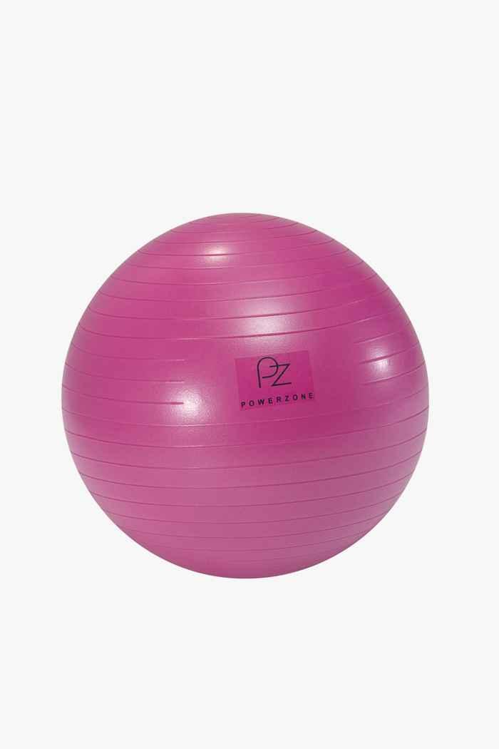 Powerzone 55 cm fit ball 1