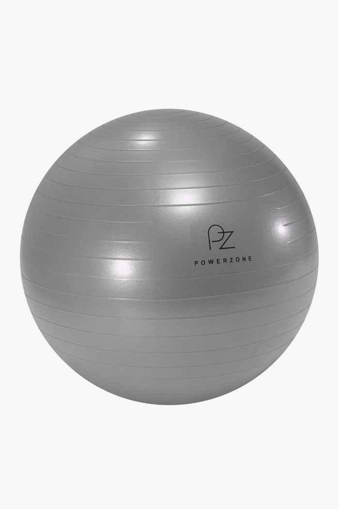 Powerzone 65 cm fit ball 1