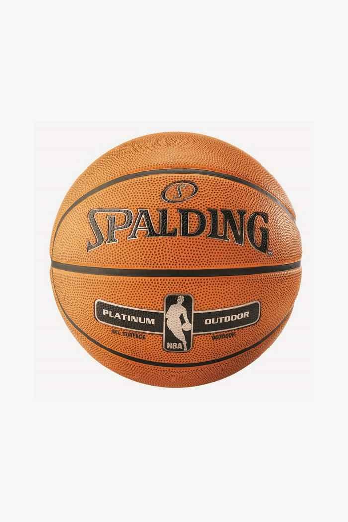 Spalding NBA Platinum Outdoor Basketball 1