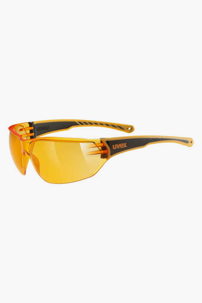 Uvex Sportstyle 204 lunettes de sport 1